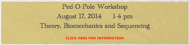 Pole Workshop
